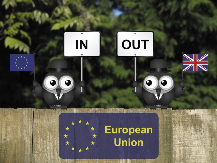 In or out - EU Referendum