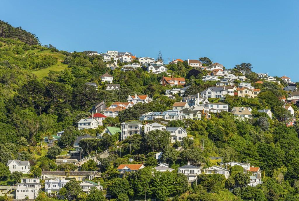 Wellington_NZ_houses