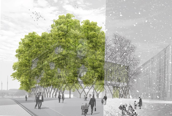 tree-house-concept
