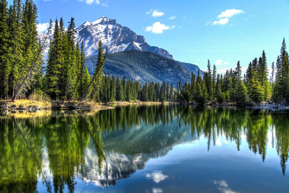 Calm bow river, Canada