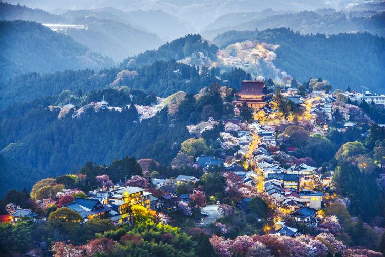 Japan 750
